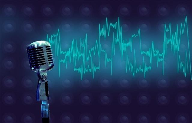 【自宅カラオケ】カラオケやバンドボーカルなど歌を歌うメリットと効果について